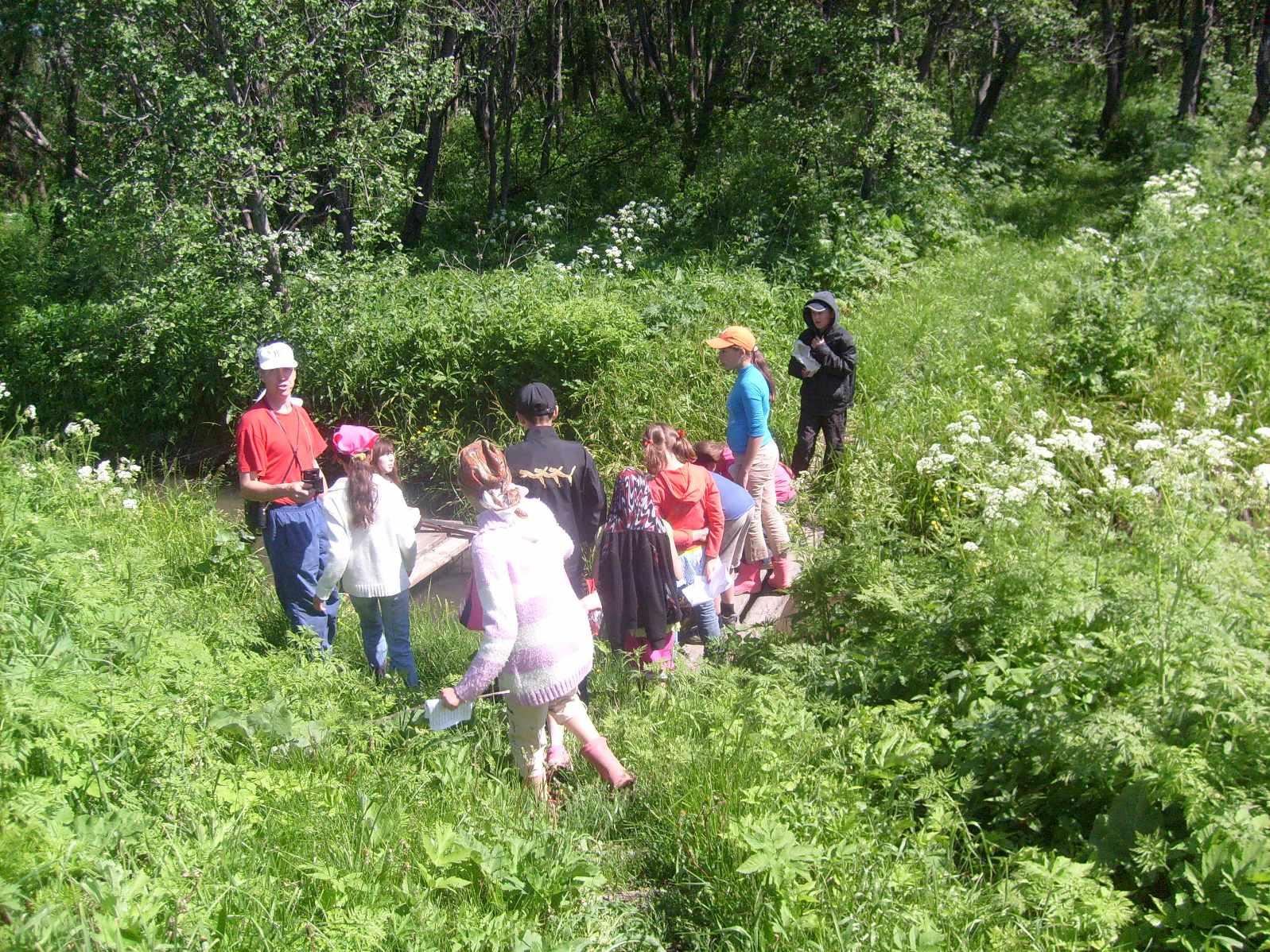 Летний оздоровительный лагерь. Июнь 2011 года