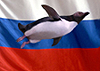 Информатизация, Linux и СПО в Российском образовании