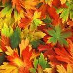 Осенний бал в школе