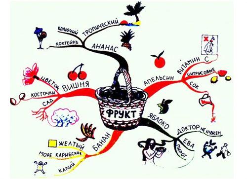 Ментальная карта по биологии