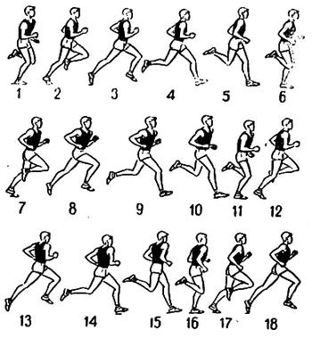 Как подготовиться к кроссу
